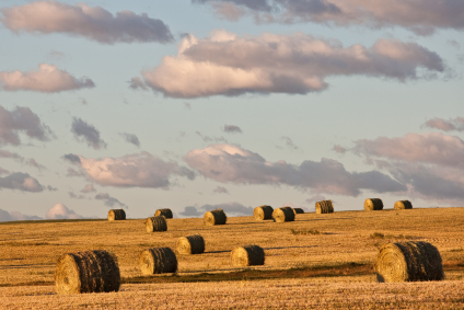 Canadese platteland